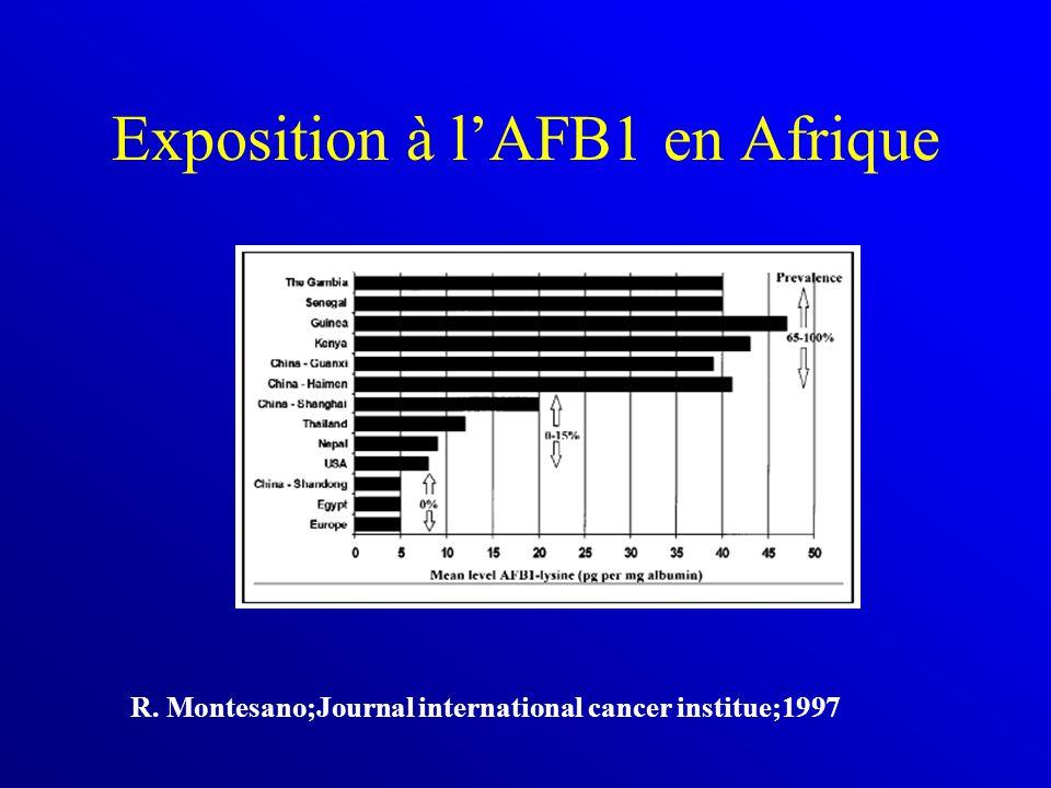 Exposition à l'AFB1 en Afrique