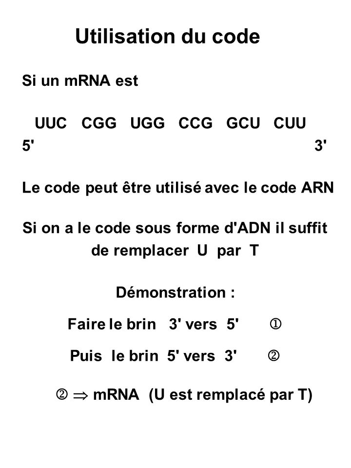 Utilisation du code Si un mRNA est UUC CGG UGG CCG GCU CUU 5 3