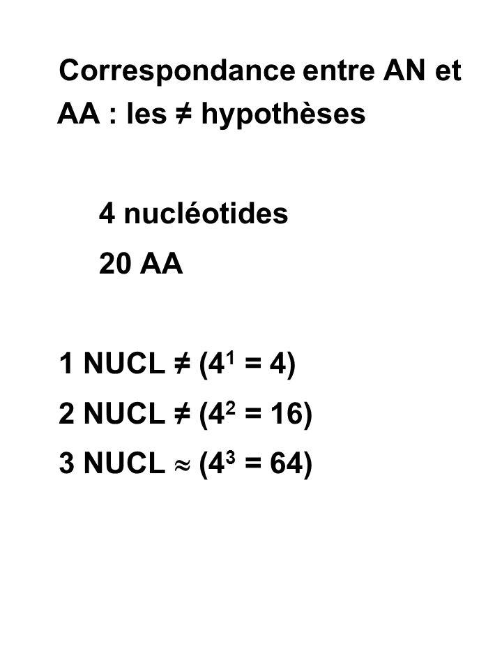 Correspondance entre AN et AA : les ≠ hypothèses