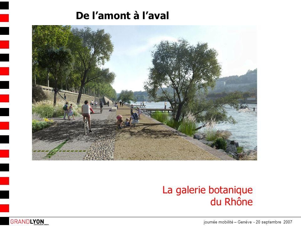 De l'amont à l'aval La galerie botanique du Rhône