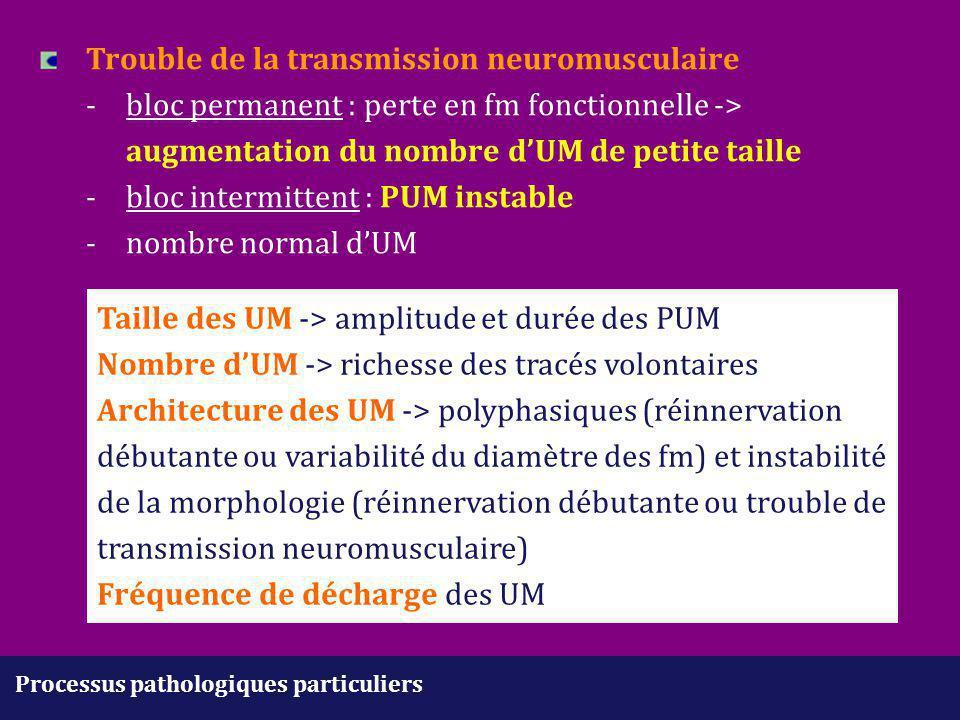 Taille des UM -> amplitude et durée des PUM
