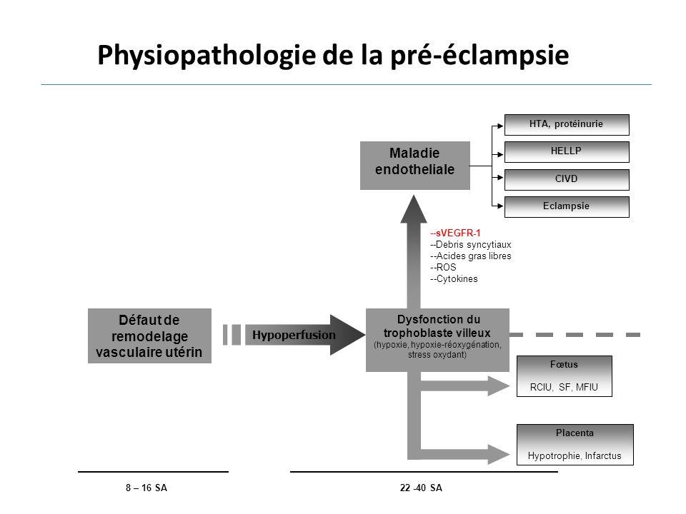 Physiopathologie de la pré-éclampsie