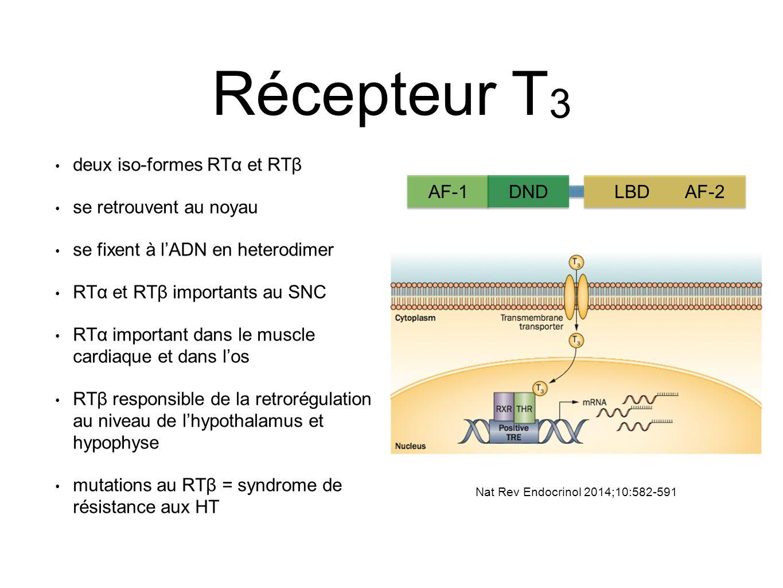 Récepteur T3 AF-1 DND LBD AF-2 deux iso-formes RTα et RTβ