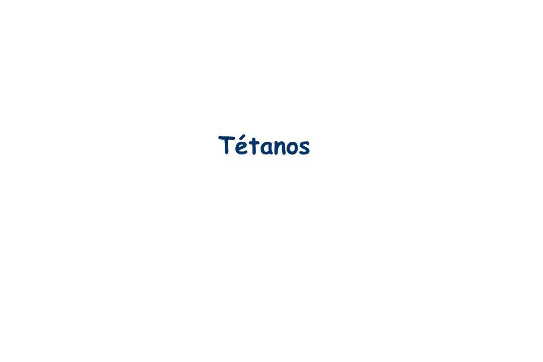 Tétanos IFSI SUD - 20/10/2006