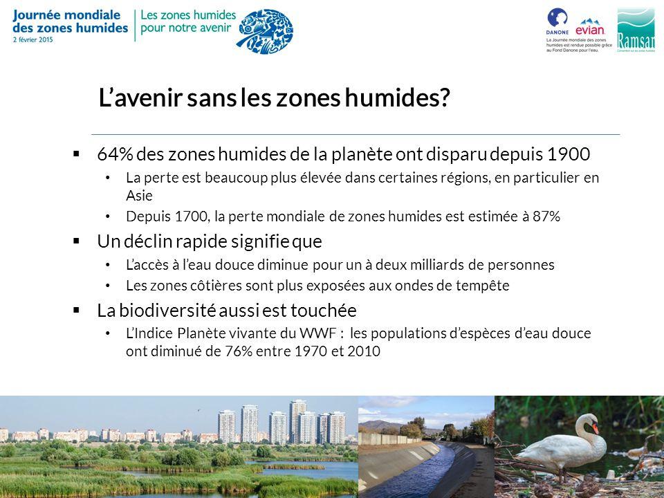 L'avenir sans les zones humides