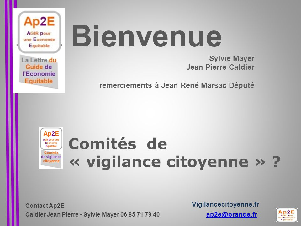 Comités de « vigilance citoyenne »