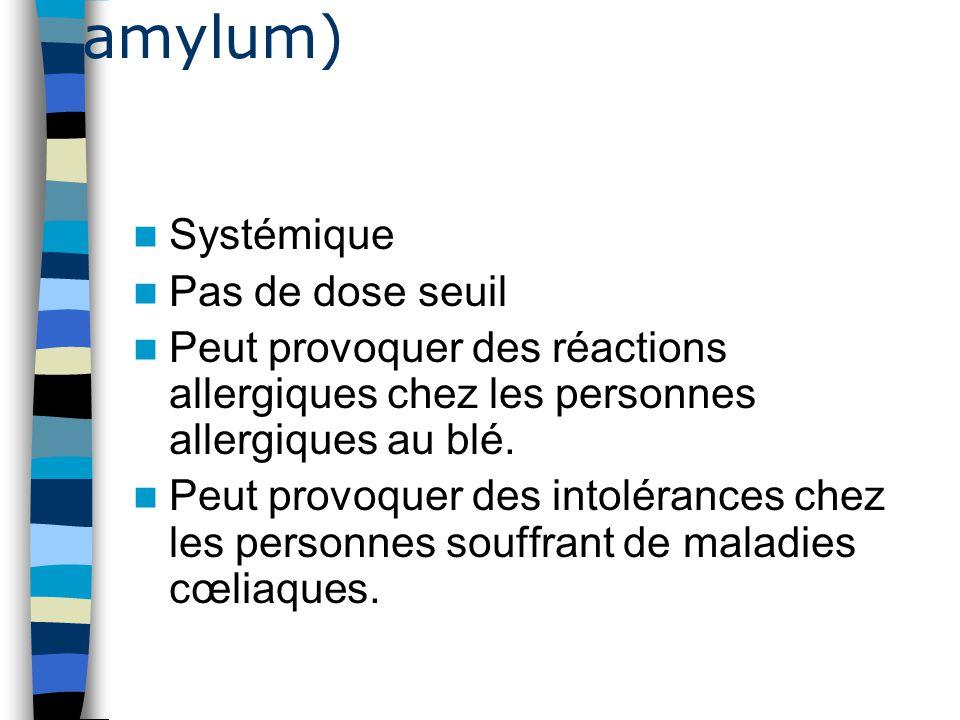 Amidon de blé (Tritici amylum)
