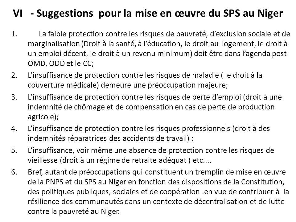 VI - Suggestions pour la mise en œuvre du SPS au Niger