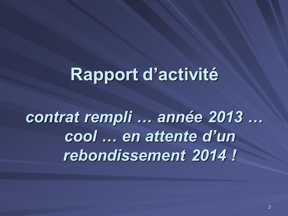 Rapport d'activité contrat rempli … année 2013 … cool … en attente d'un rebondissement 2014 !