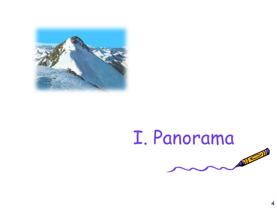 I. Panorama