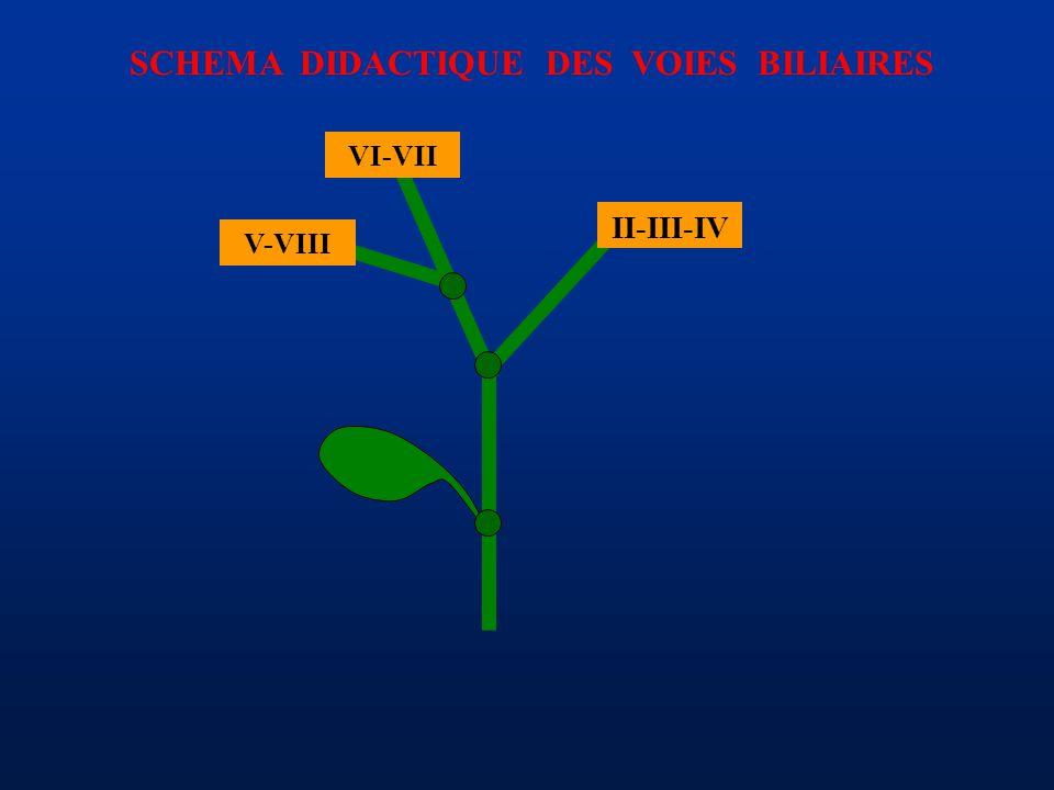 SCHEMA DIDACTIQUE DES VOIES BILIAIRES