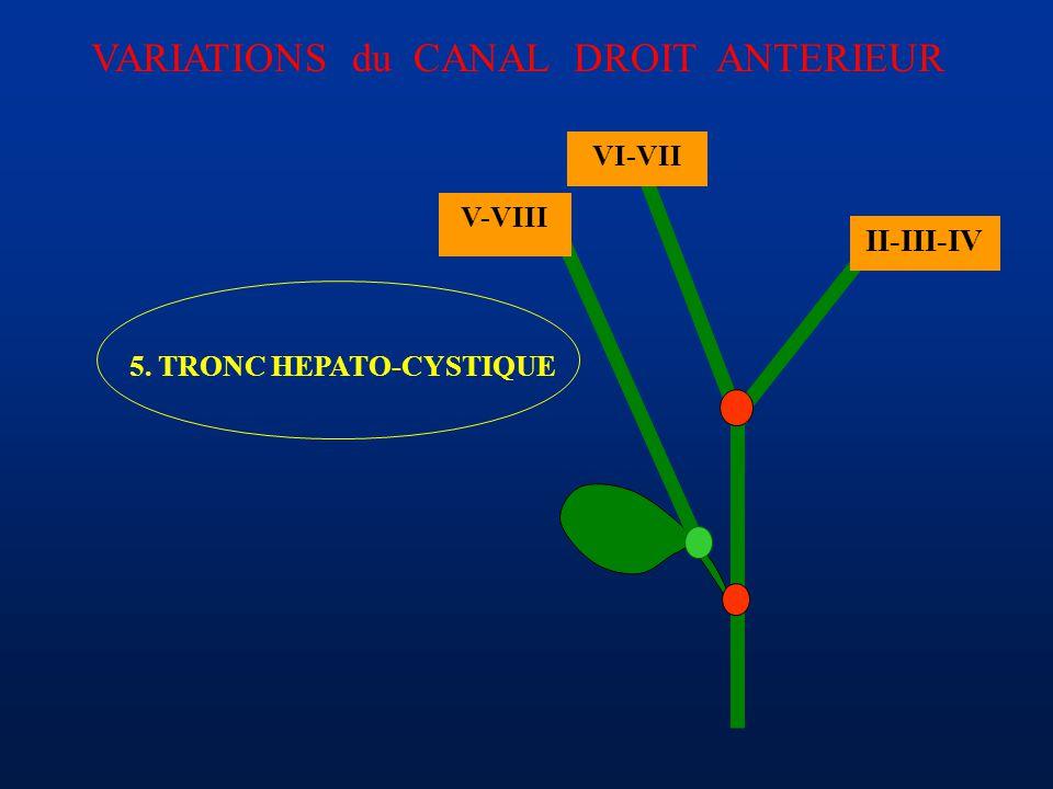 5. TRONC HEPATO-CYSTIQUE