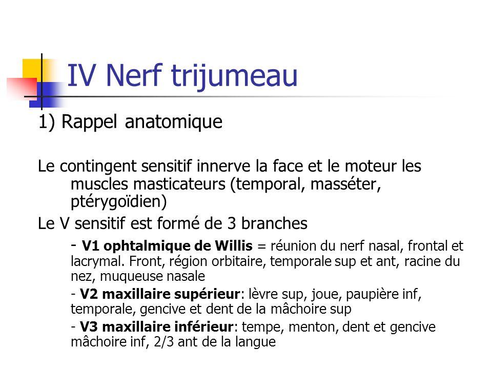 IV Nerf trijumeau 1) Rappel anatomique
