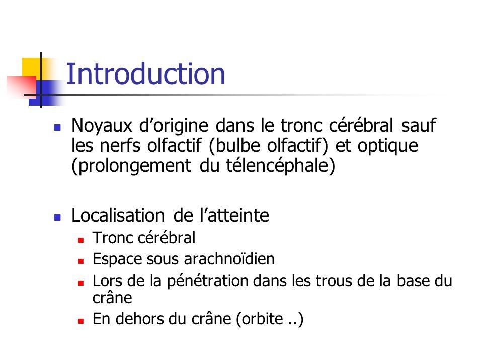 Introduction Noyaux d'origine dans le tronc cérébral sauf les nerfs olfactif (bulbe olfactif) et optique (prolongement du télencéphale)
