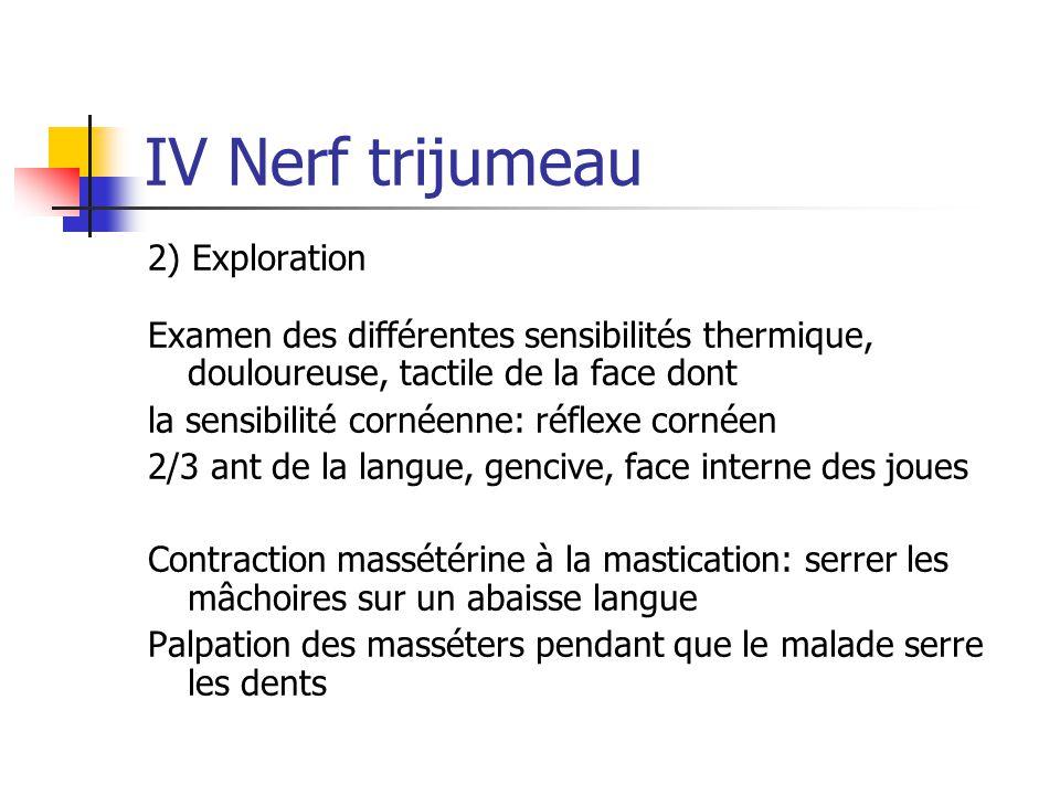 IV Nerf trijumeau 2) Exploration