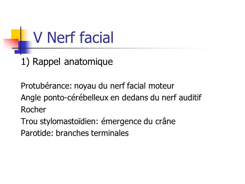 V Nerf facial 1) Rappel anatomique