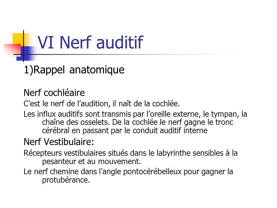 VI Nerf auditif 1)Rappel anatomique Nerf cochléaire Nerf Vestibulaire: