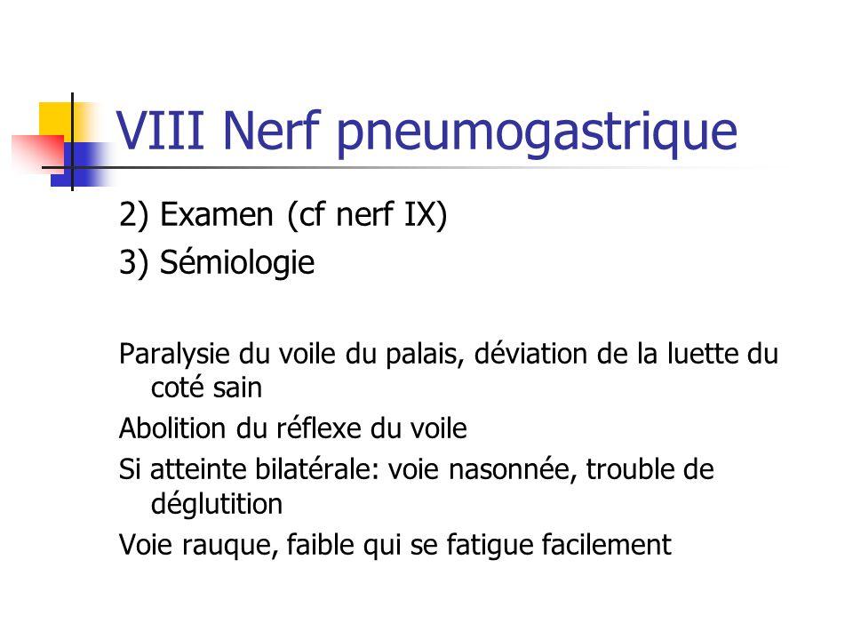 VIII Nerf pneumogastrique