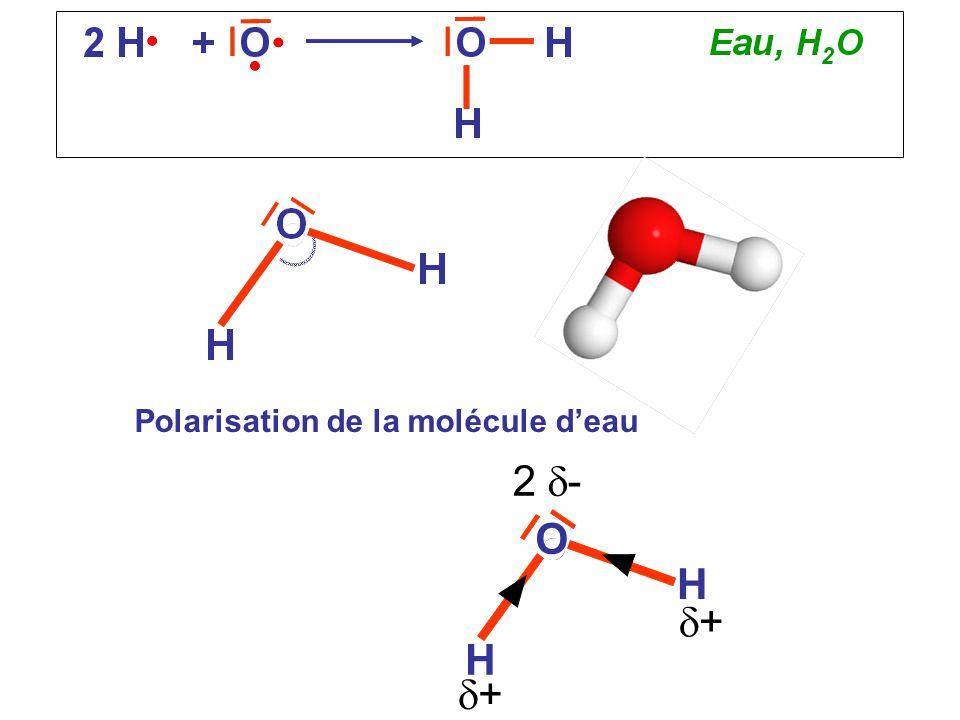 Polarisation de la molécule d'eau