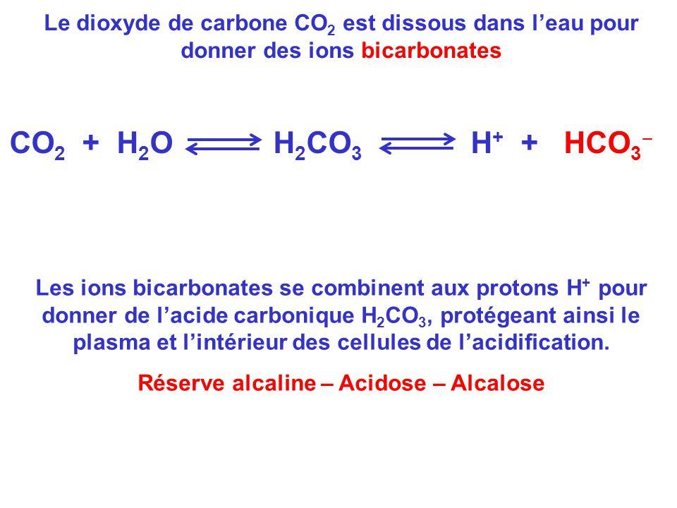 Réserve alcaline – Acidose – Alcalose