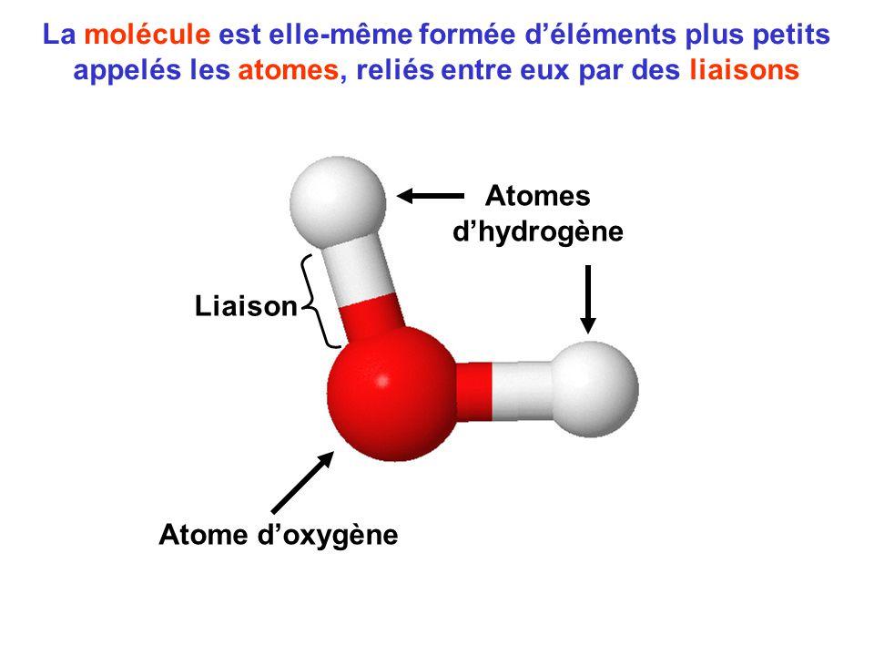 La molécule est elle-même formée d'éléments plus petits appelés les atomes, reliés entre eux par des liaisons