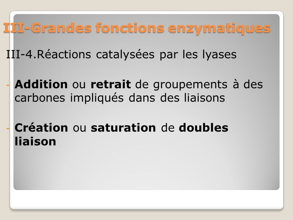 III-Grandes fonctions enzymatiques