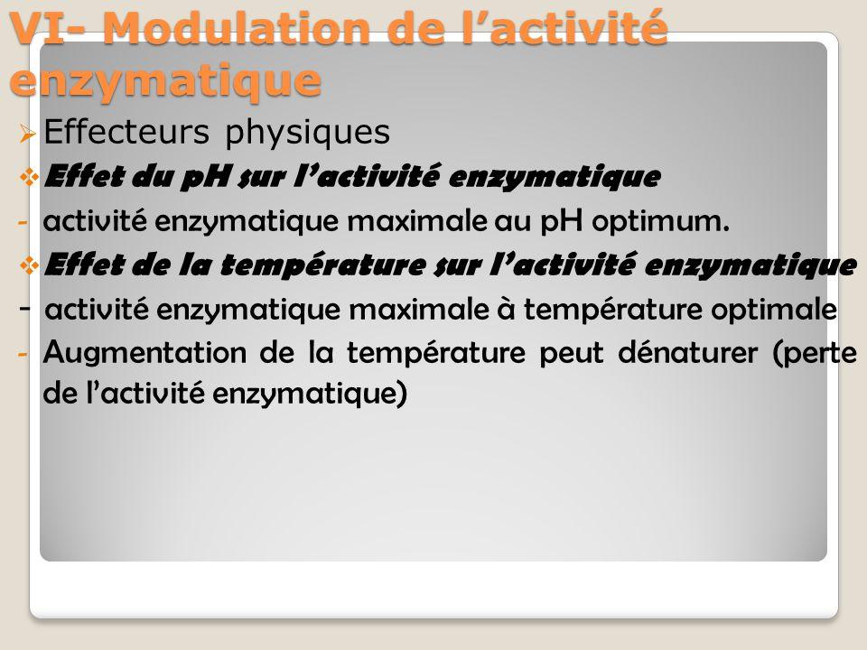 VI- Modulation de l'activité enzymatique