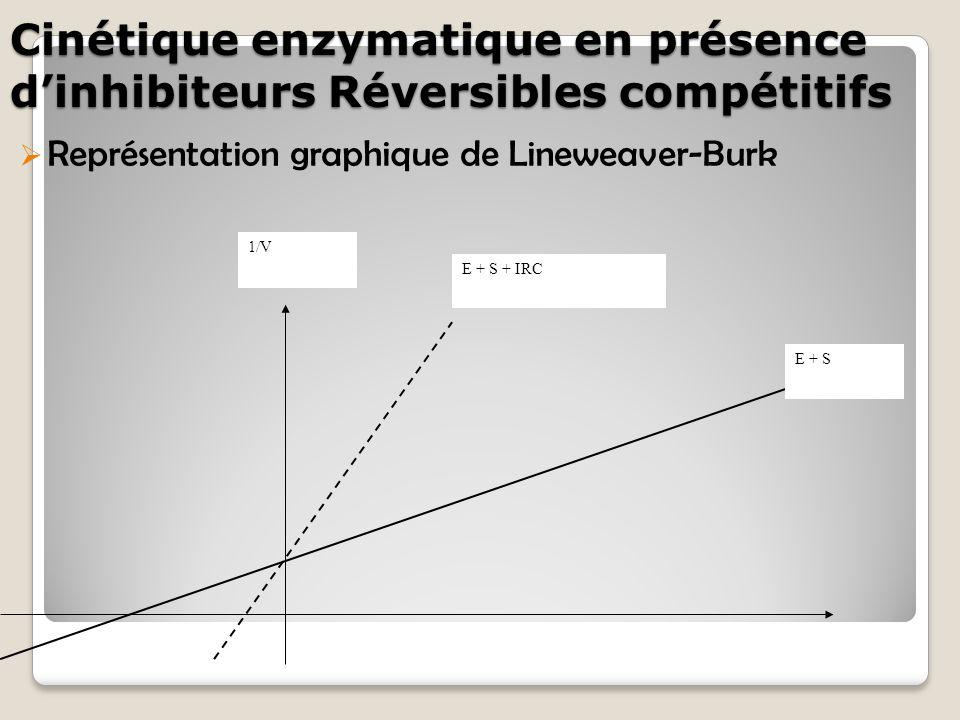 Cinétique enzymatique en présence d'inhibiteurs Réversibles compétitifs