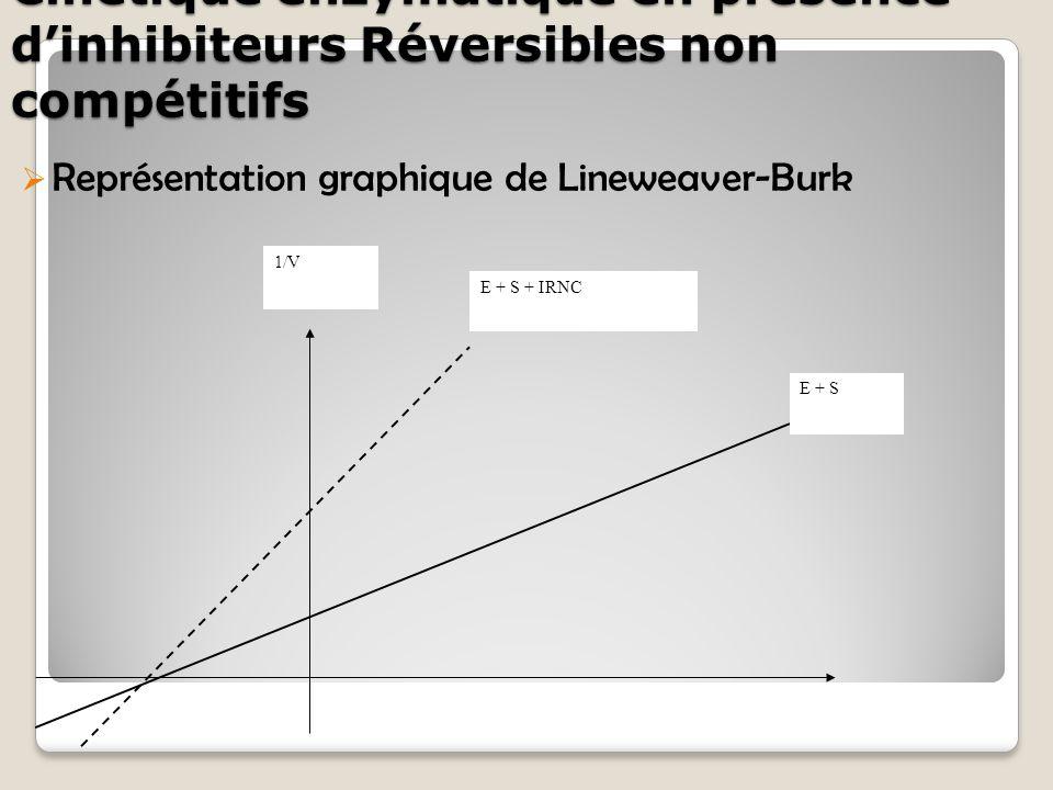Cinétique enzymatique en présence d'inhibiteurs Réversibles non compétitifs