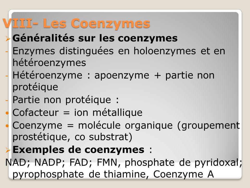 VIII- Les Coenzymes Généralités sur les coenzymes