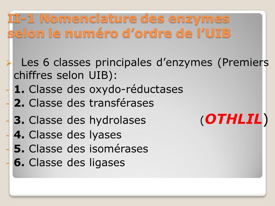 II-1 Nomenclature des enzymes selon le numéro d'ordre de l'UIB