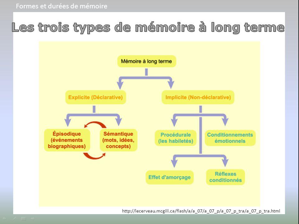 Les trois types de mémoire à long terme