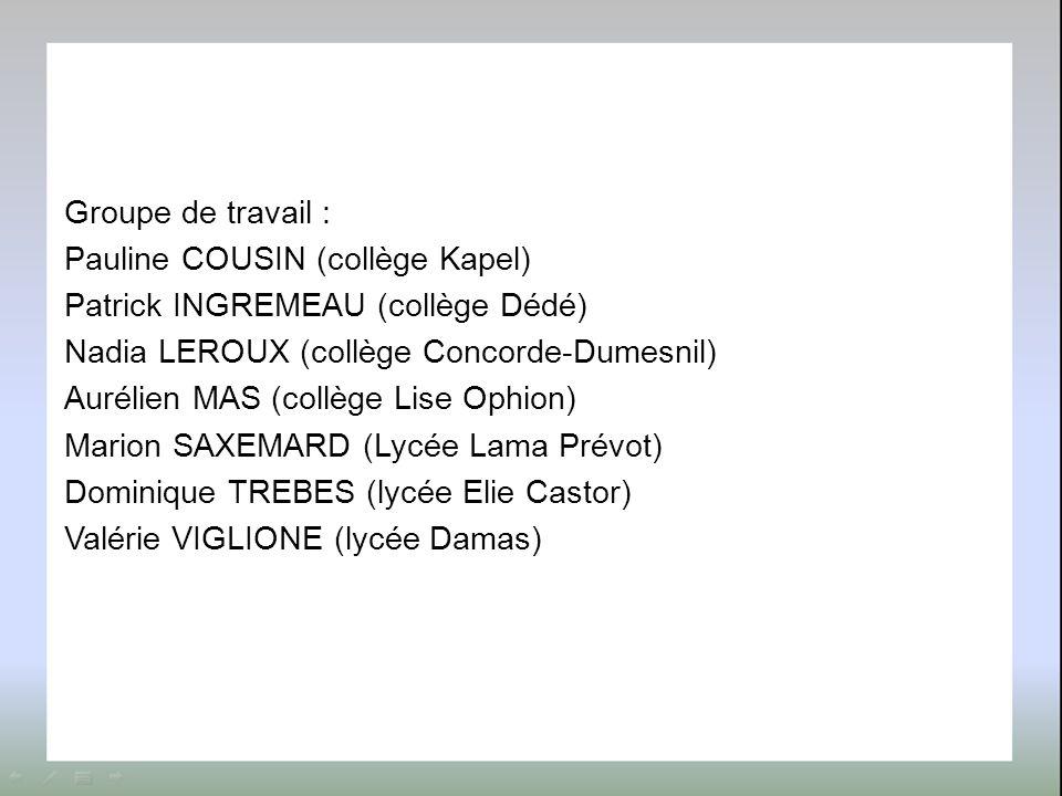 Groupe de travail : Pauline COUSIN (collège Kapel) Patrick INGREMEAU (collège Dédé) Nadia LEROUX (collège Concorde-Dumesnil) Aurélien MAS (collège Lise Ophion) Marion SAXEMARD (Lycée Lama Prévot) Dominique TREBES (lycée Elie Castor) Valérie VIGLIONE (lycée Damas)