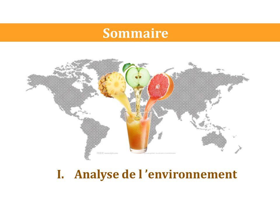 Sommaire Analyse de l 'environnement