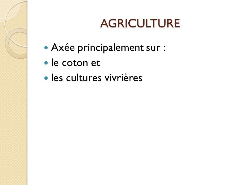 AGRICULTURE Axée principalement sur : le coton et