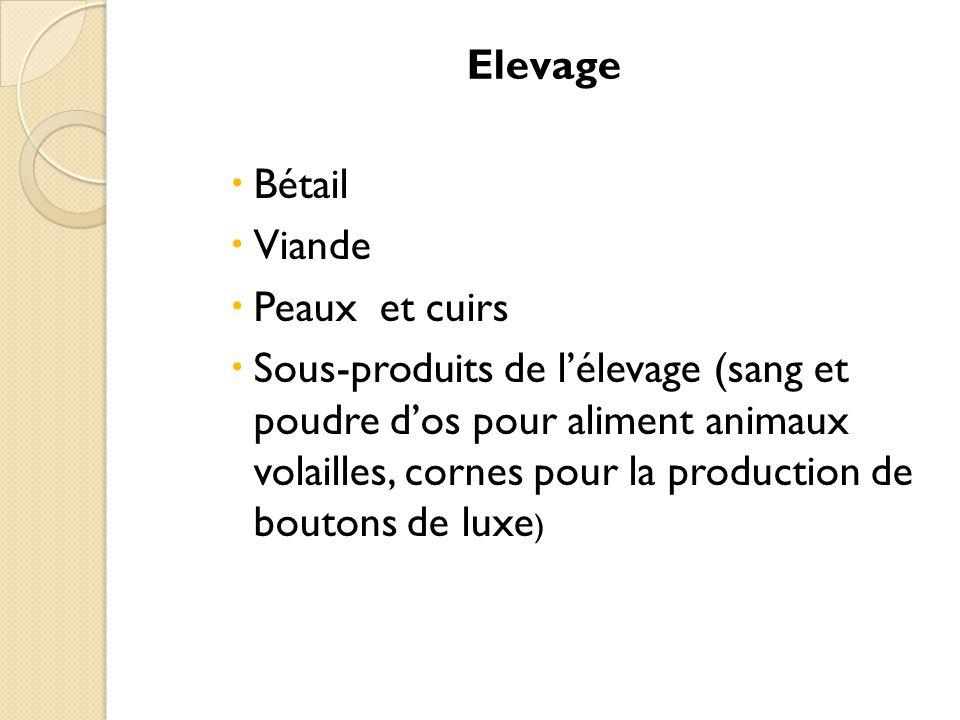 Elevage Bétail. Viande. Peaux et cuirs.