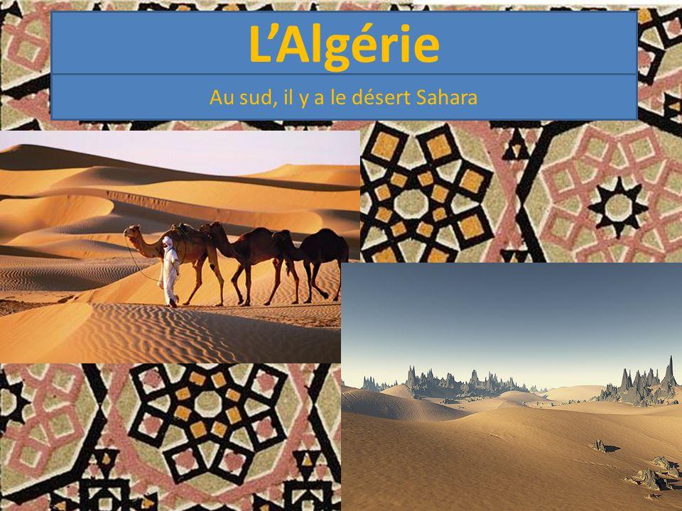 Au sud, il y a le désert Sahara