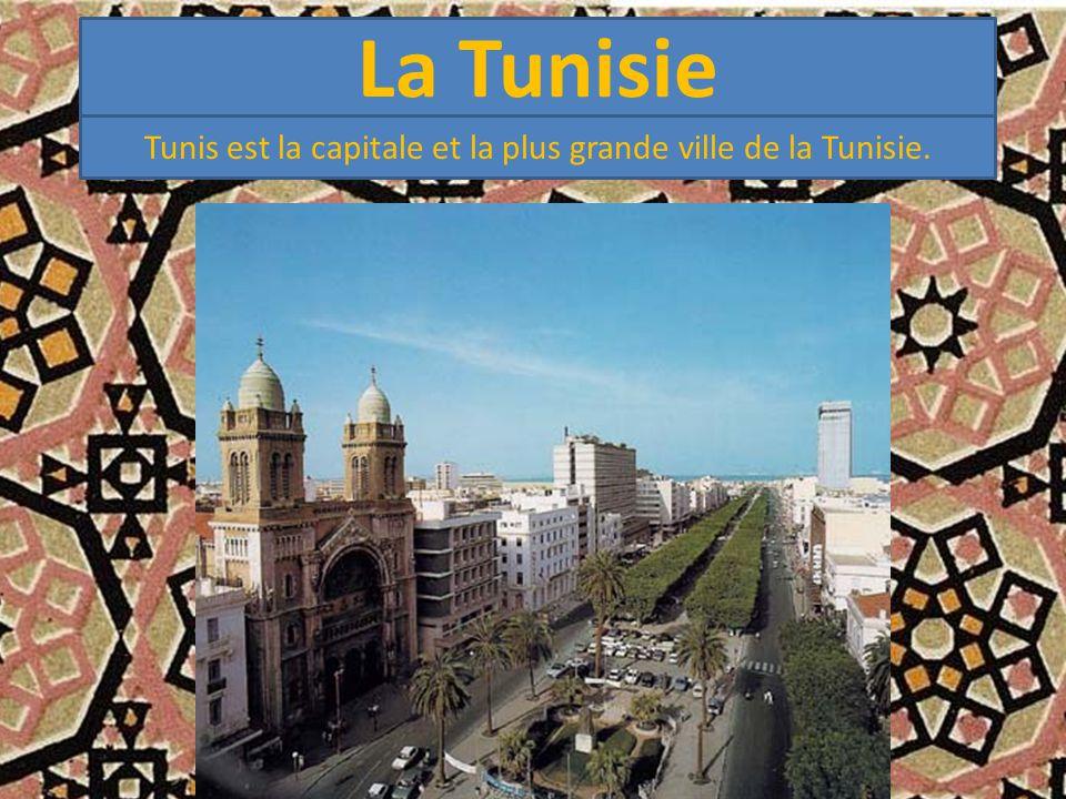 Tunis est la capitale et la plus grande ville de la Tunisie.