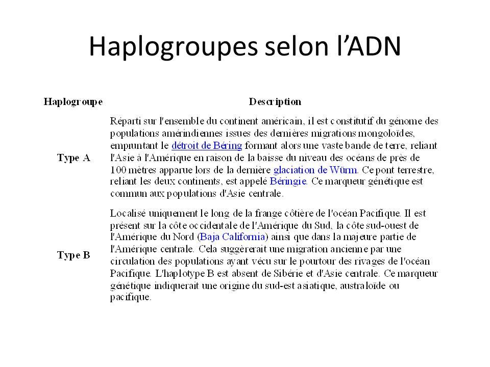 Haplogroupes selon l'ADN