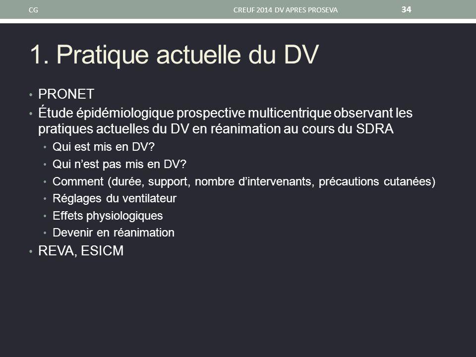 1. Pratique actuelle du DV