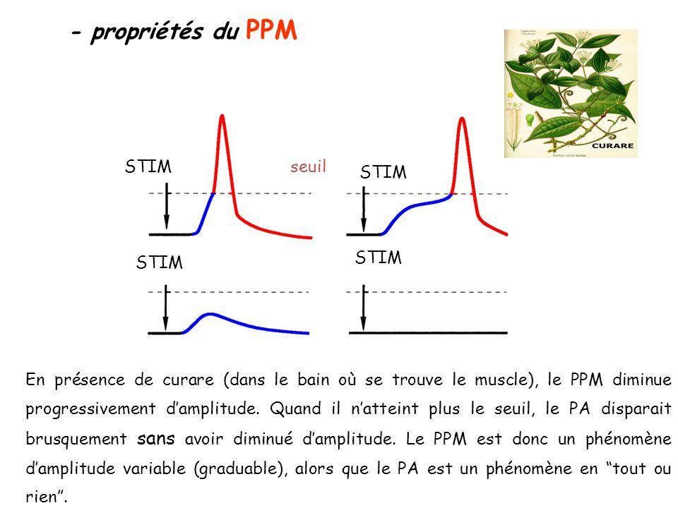 - propriétés du PPM STIM seuil STIM STIM STIM