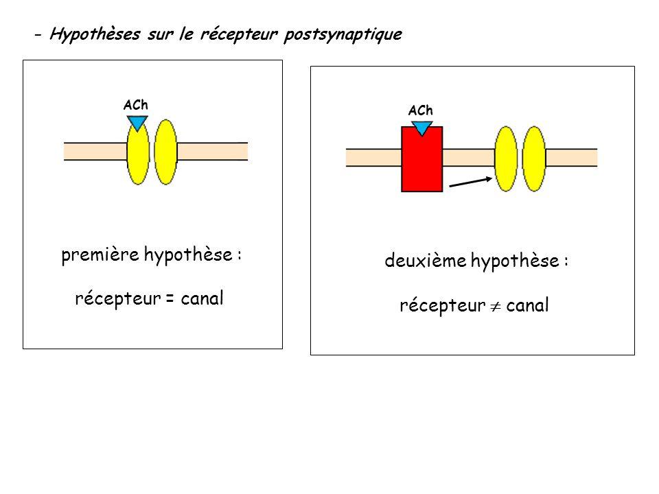 première hypothèse : deuxième hypothèse : récepteur = canal