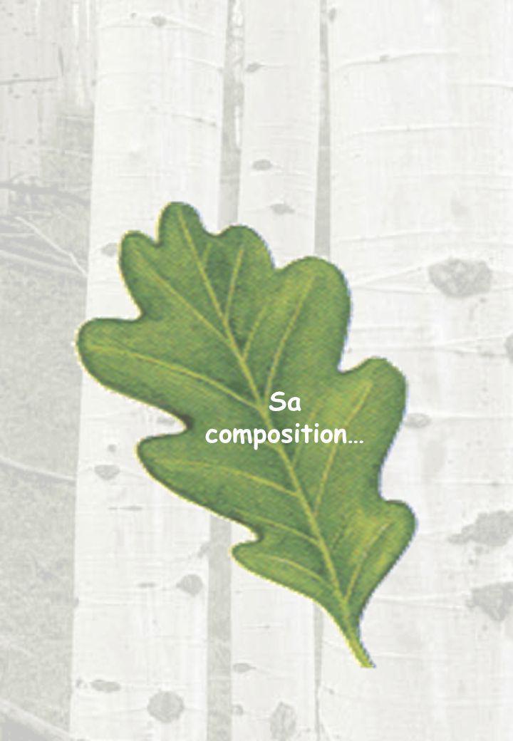 Sa composition…