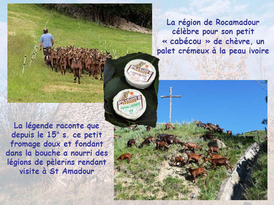 La région de Rocamadour célèbre pour son petit « cabécou » de chèvre, un palet crémeux à la peau ivoire