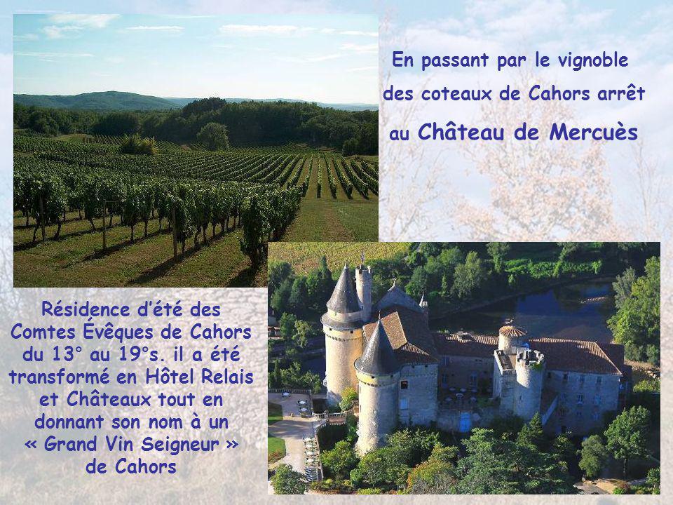 En passant par le vignoble des coteaux de Cahors arrêt