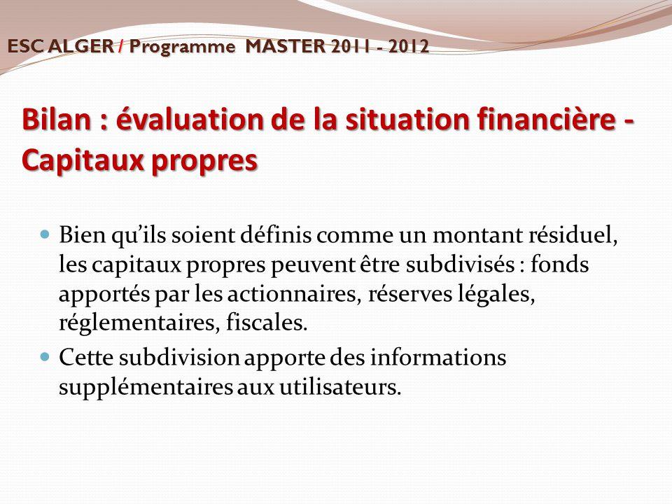 Bilan : évaluation de la situation financière - Capitaux propres