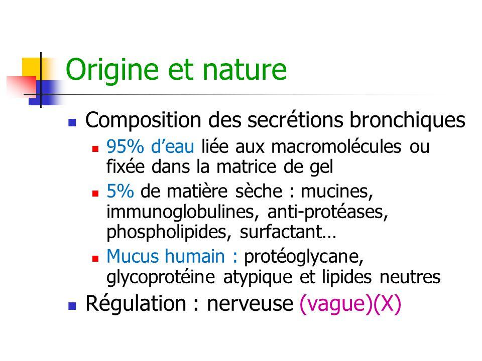 Origine et nature Composition des secrétions bronchiques