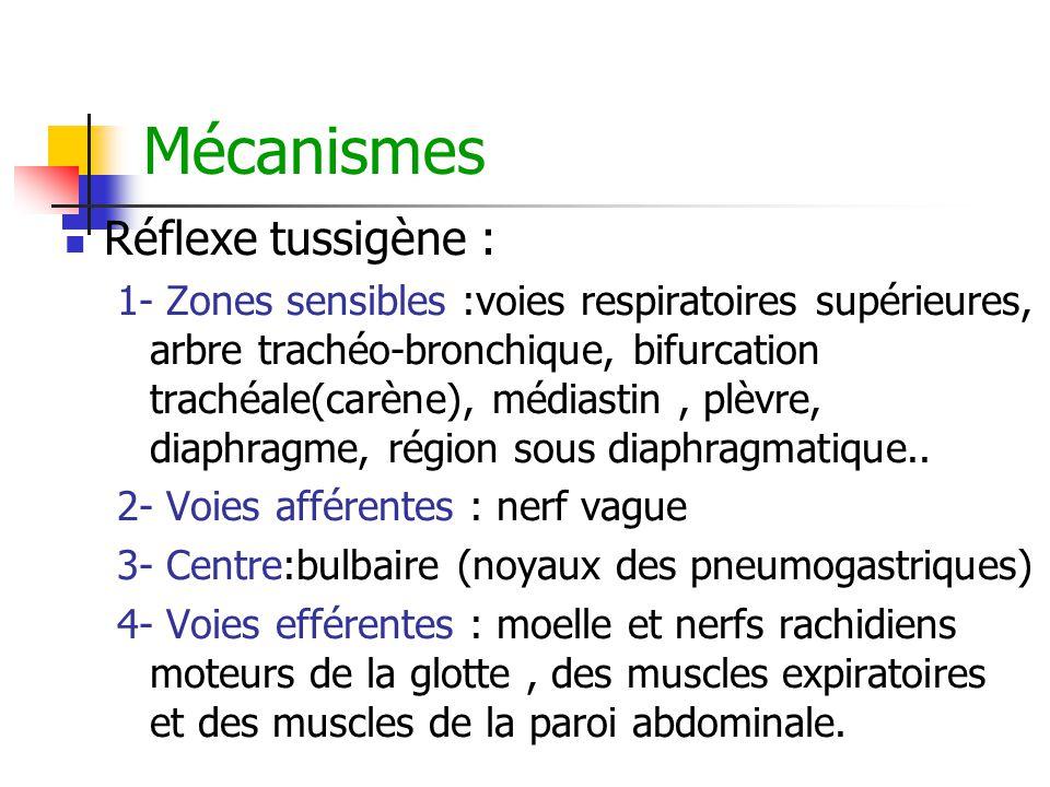 Mécanismes Réflexe tussigène :