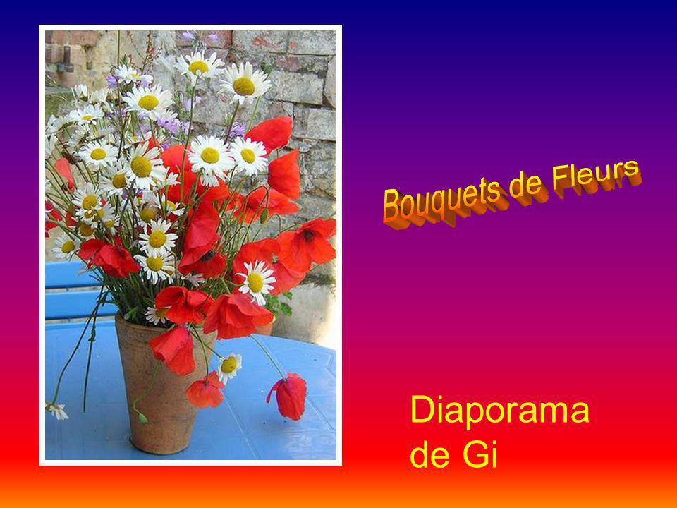 Bouquets de Fleurs Diaporama de Gi