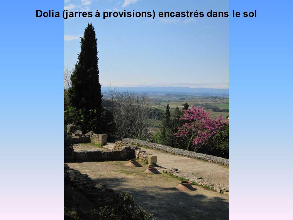 Dolia (jarres à provisions) encastrés dans le sol